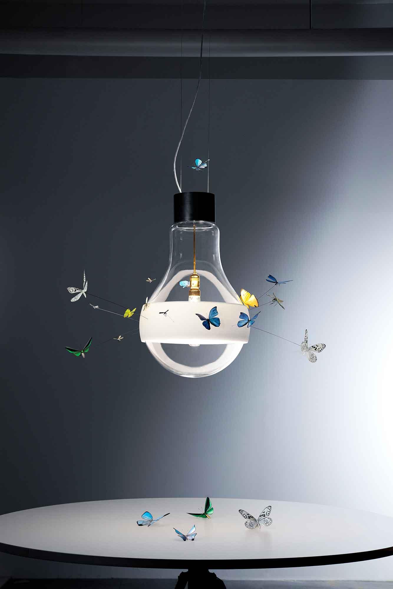 warum kreisen fliegen um lampen