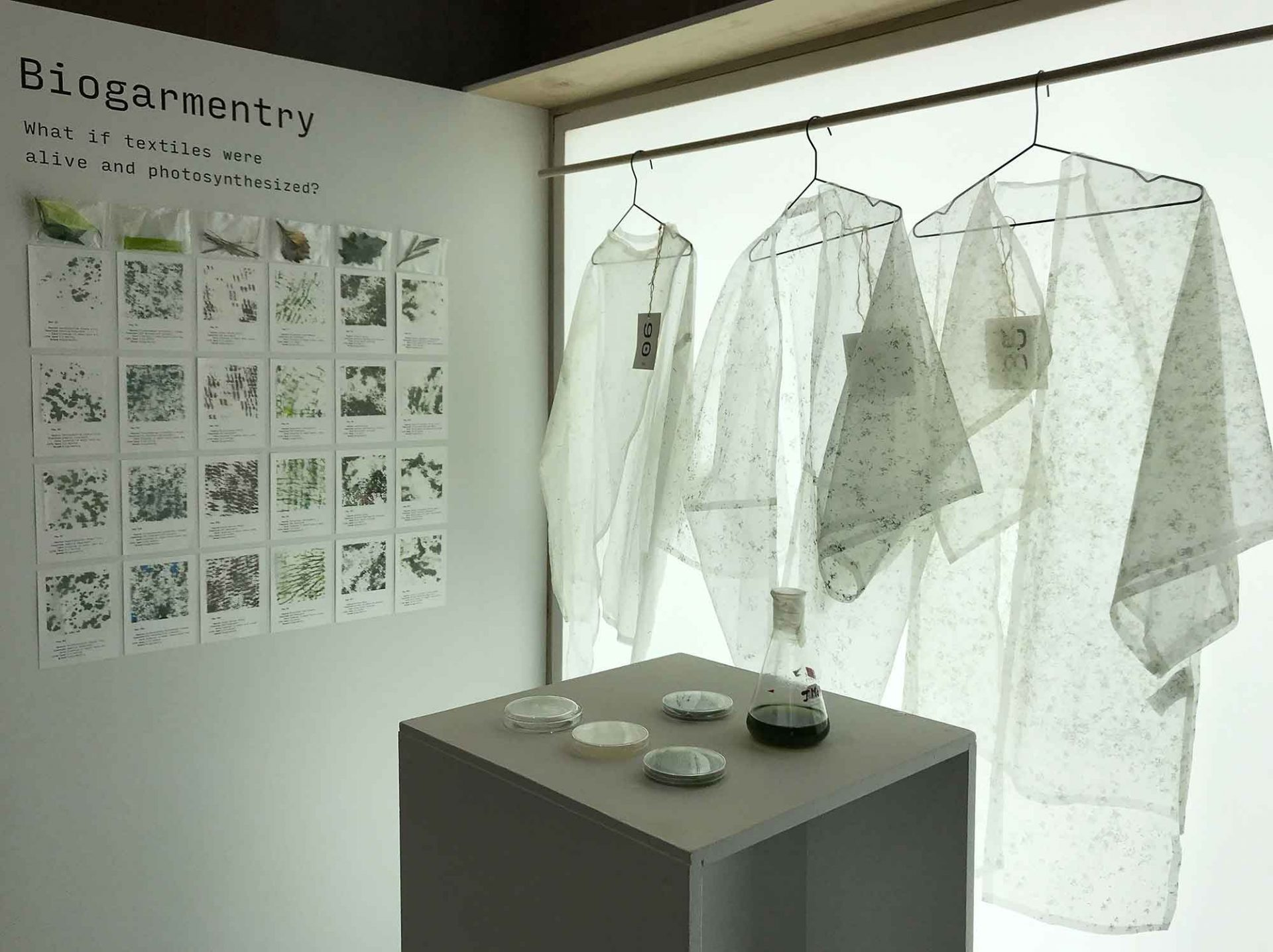 Climate Care, Vienna Biennale 2021