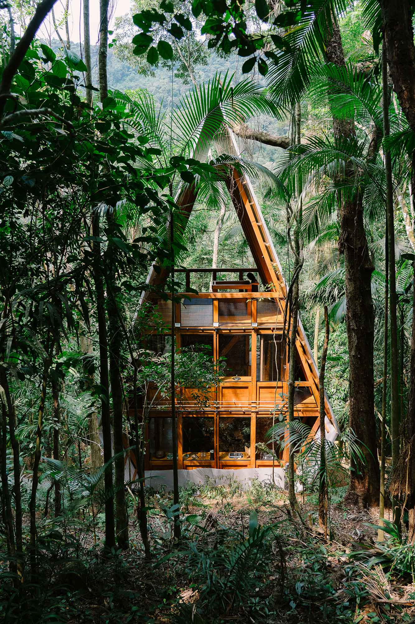 Monkey House, gestalten, Cabin Fever